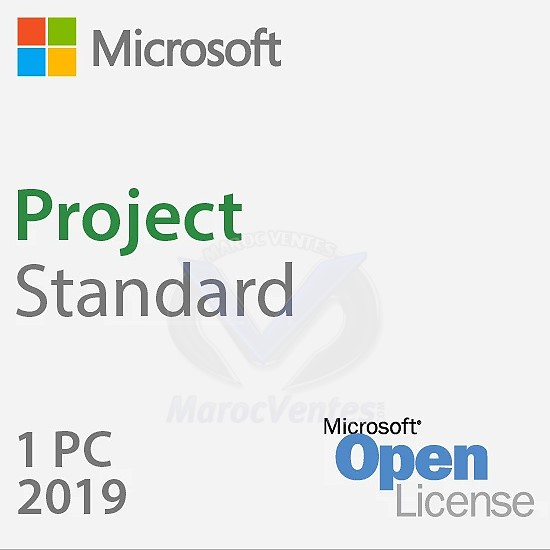 Project Standard 2019 Licence Single Language 076-05829